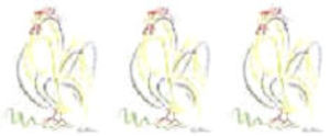 Picassos_rooster_3_smaller_2