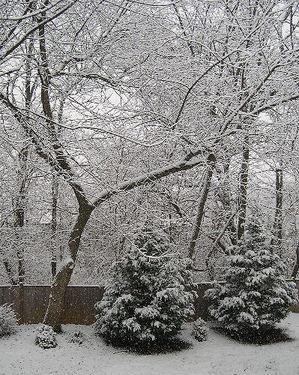 01_18_08_snow_cyprus